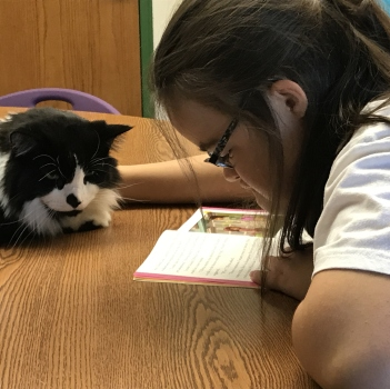 Middle School student reads to a cat
