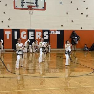 Tae kwon do demonstration at wellness fair